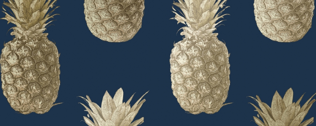 Shortlisted projects for The Pineapples will present at the Festival in July